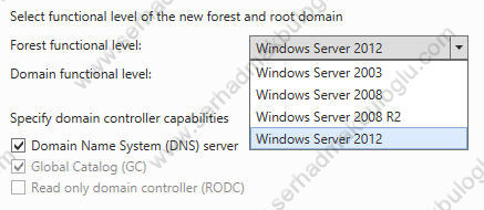 Windows Server 2012 Domain & Forest Functional Level